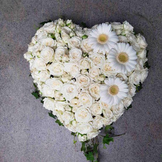 somna in litet vitt hjärta